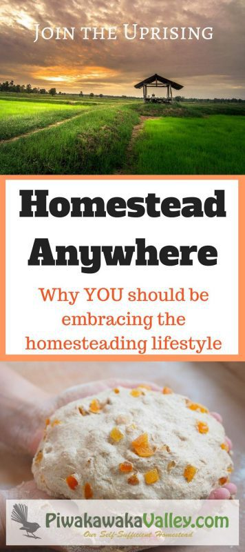 Do you feel like we need a change? Like humanity needs a lifeline? Get yourself involved, learn how to homestead where you are today. Join the homesteading revolution. #homesteading #HomesteadAnywhere