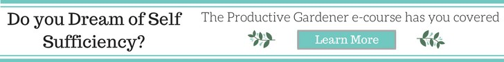 The Productive Gardener: Getting a full time harvest from a part time garden