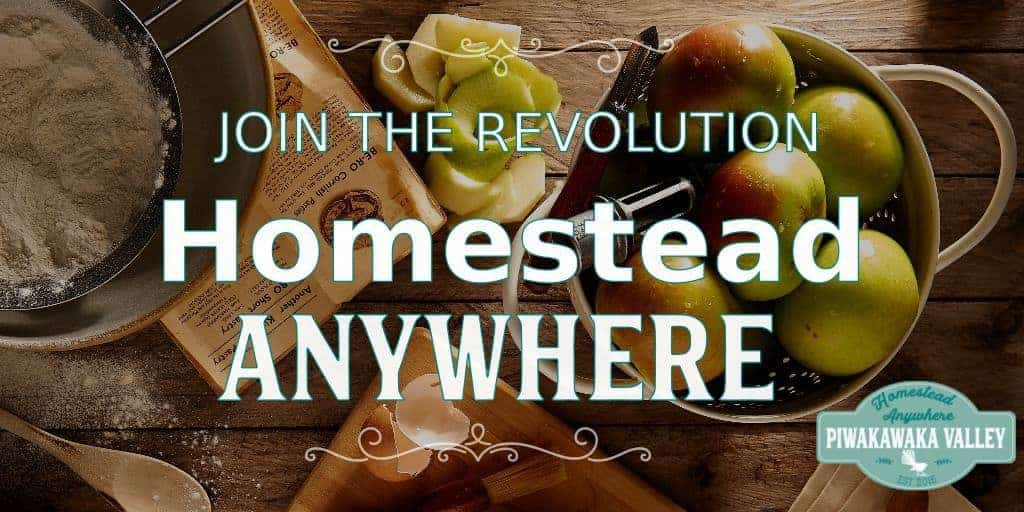 Do you feel like we need a change? Like humanity needs a lifeline? Get yourself involved, learn how to homestead where you are today. Join the revolution. #homesteading #HomesteadAnywhere