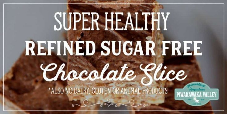 Dairy, Gluten and Refined-sugar free Chocolate Slice