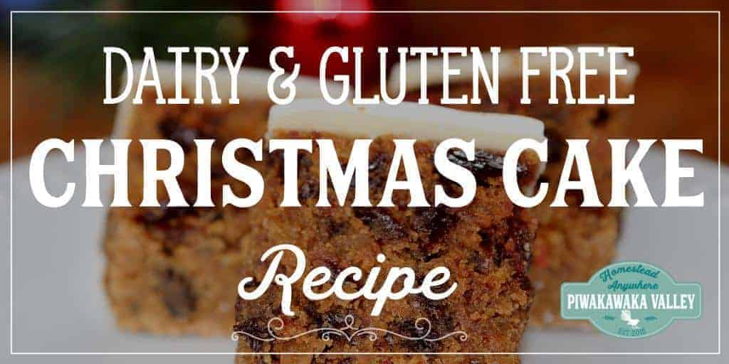 Gluten Free Dairy Free Traditional Christmas Fruit Cake