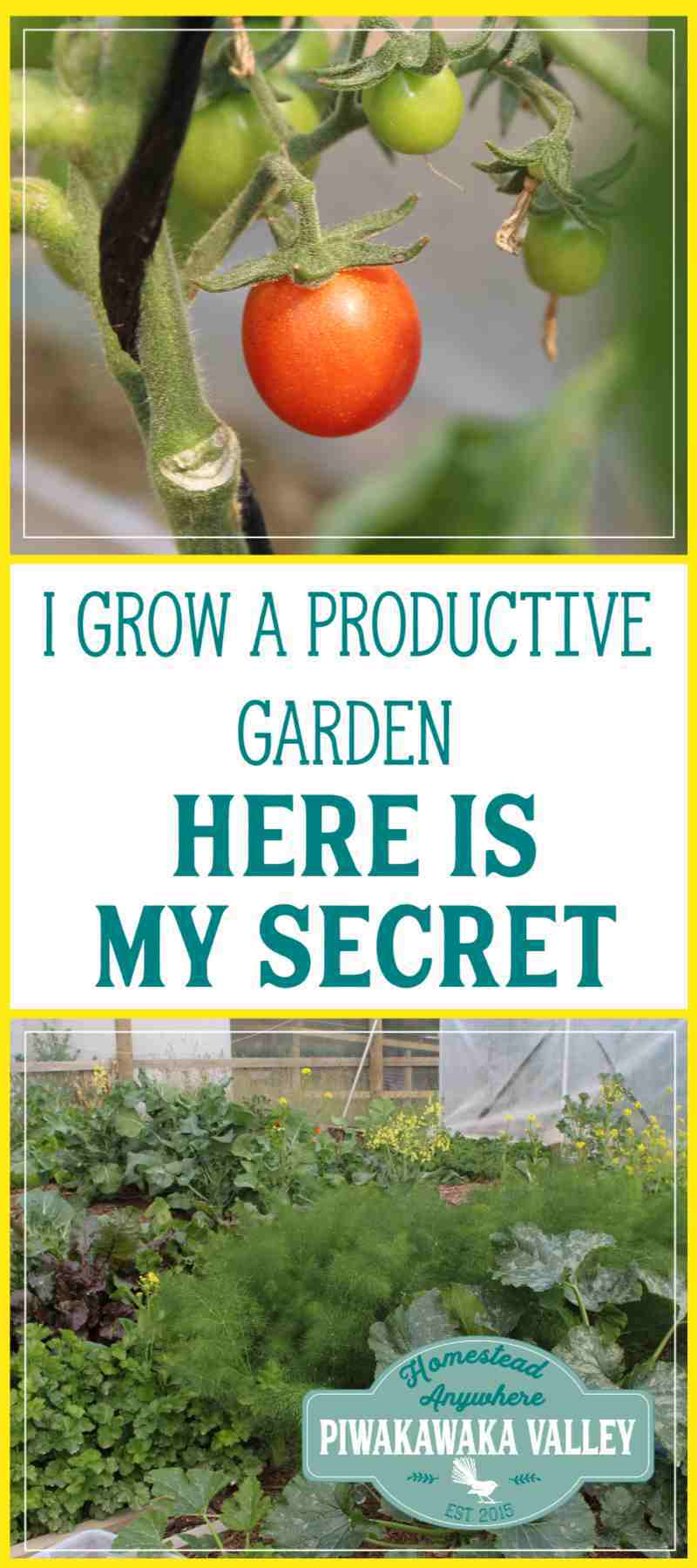 Do you want to know a secret? I successfully grow a very productive garden and feed our family of 5 year round from it in less that 2 hours per week. Let me share my secrets with you. #gardening #beginner #course