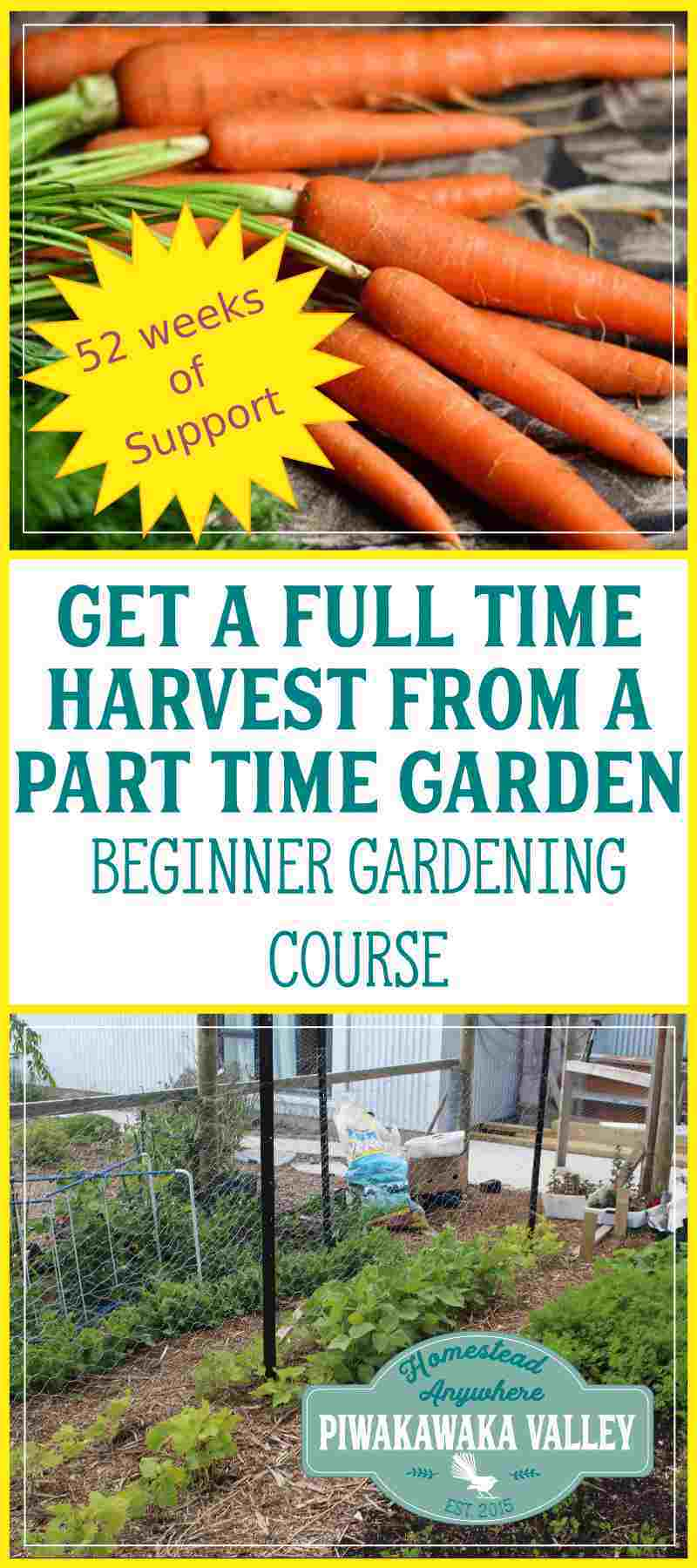 Growing a garden DOESN'T have to take a lot of time! I am a busy person and I have developed a method that gives you maximum output for minimal input I share it all in my beginner gardening course. Find out how today.