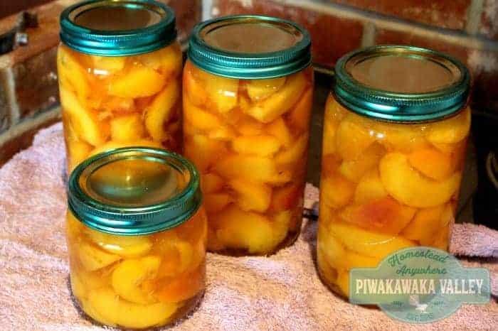 canning stone fruit