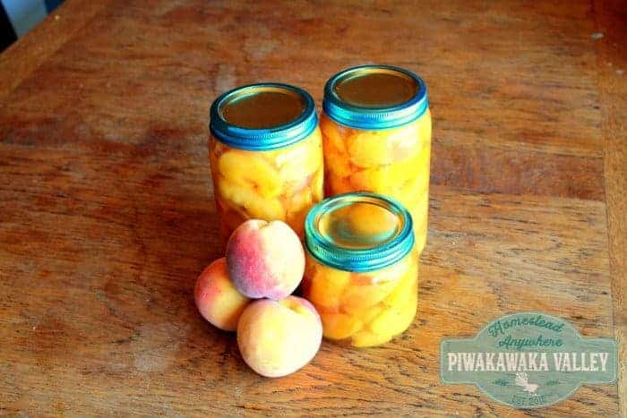 Easy Canning for Beginners - Preserving Stone Fruit in Jars the Easy Way promo image