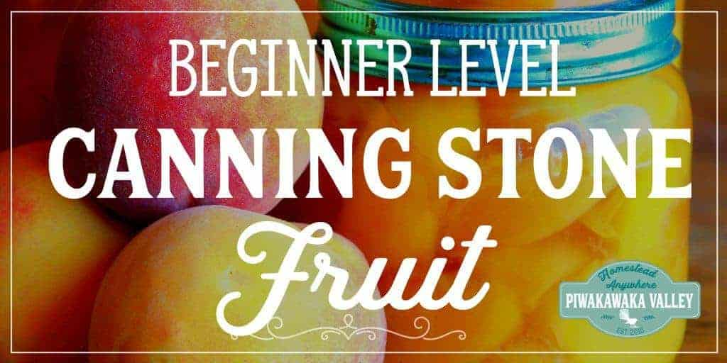 Easy Canning for Beginners – Preserving Stone Fruit in Jars the Easy Way