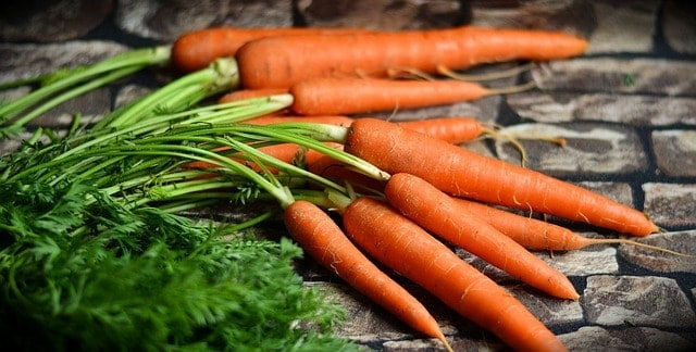 5 Delicious Vegetables You Can Grow Indoors in Winter | Grow vegetables inside over winter promo image