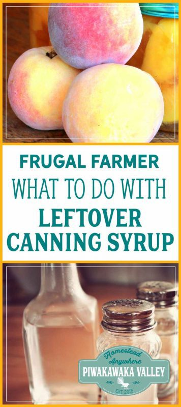 Super frugal tip: How to use leftover canning syrup for something productive! Fruit vinegar recipe. fermented foods, fermented pickles, sea salt fermented vegetables, fermented recipes, easy fermentation for beginners, how to ferment vegetables, fermentation tips, step by step fermenting food, health, families, immune system, gut health, gut biome, natural health, weston price, whey fermenting vegetables to preserve them. #ferment #guthealth #kombucha #fermenting #homesteading #naturalhealth #probiotics #fermented #traditional