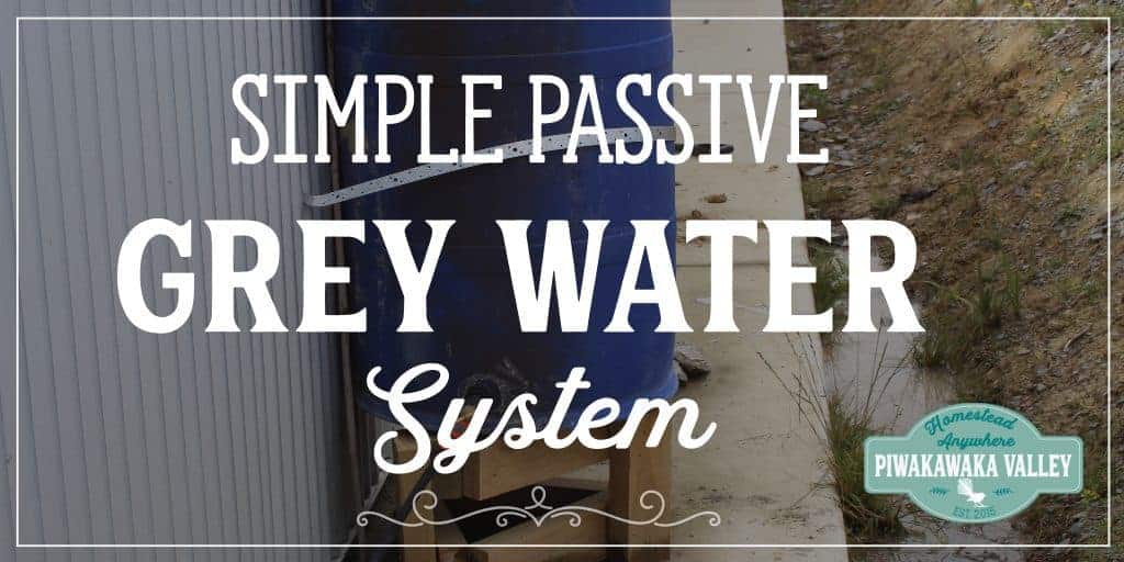 Stop Wasting Water – Set up a Simple Passive Grey Water System