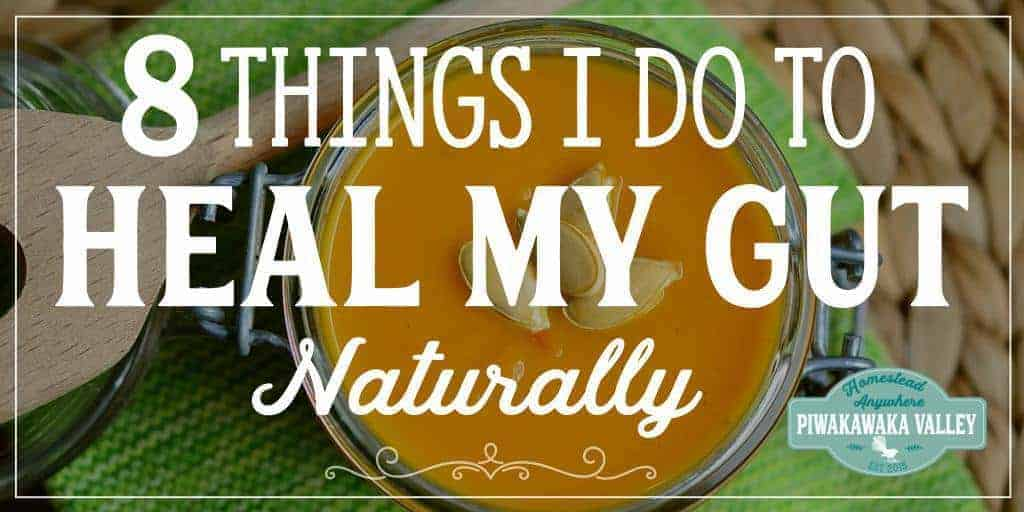 Are you suffering from lethargy, headaches and gut issues? Here are 8 things I did to help heal my gut.