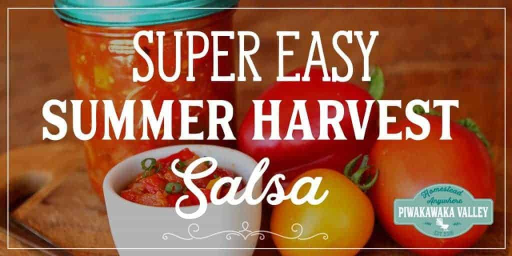 Simple Canned Salsa – Using up the Summer Harvest
