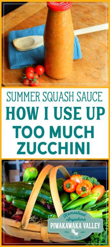 We always end up with too much zucchini. Here is my solution to using up the excess summer squash. This recipe is a great gardening hack.  beginner cooking recipes, beginner dinner recipes, crockpot, cooking from scratch, healthy food recipes, whole food dinner recipes   #homesteading #fromscratch #fromthefarm #bakingtips #baking #cookingtips  #cooking #cooking101 #recipe #recipeoftheday #recipeideas #cook