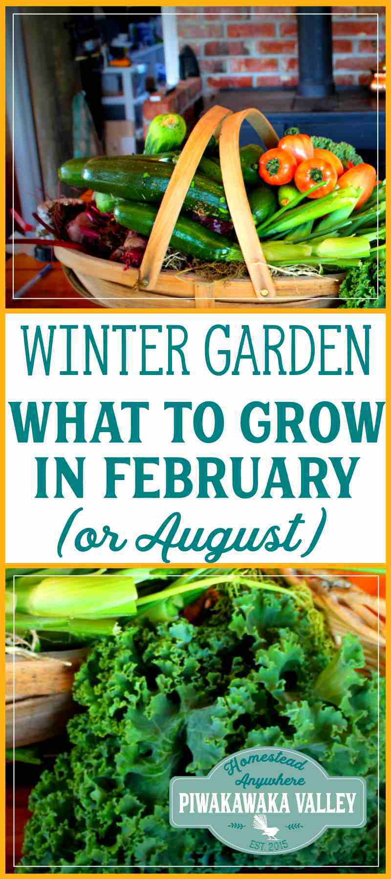 What to plant in your winter vegetable garden in february or august - Checklist for your vegetable garden in august ...