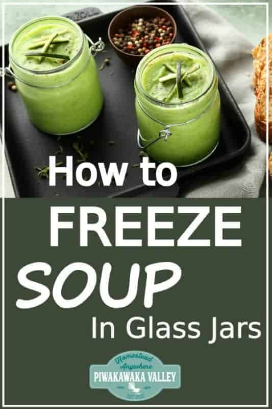 Are you looking for a zero waste, plastic free food storage solution for your kitchen? Here are two ways to freeze liquids without using plastic! Glass and silicone are both freezer safe waste free food storage option that you should try out! #zerowaste #plasticfree #foodstorage #piwakawakavalley