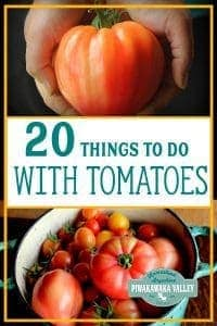 What to do with too many tomatoes? Summer harvest is in full swing, and finding things to do with tomatoes can be hard. Here are 20 recipes that will help you use up your tomatoes and preserve them for later in the year. Canning, dehydrating, fermenting and pickling recipes are all included! #tomatoes #summer #piwakawakavalley #summerbounty #harvest #canning