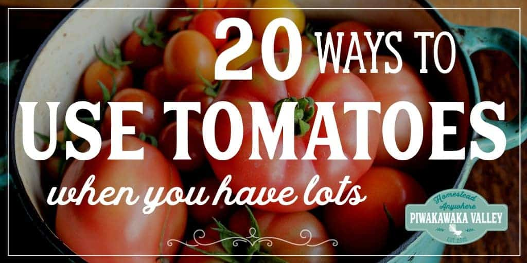 20 Ways with Tomatoes: What to do with too many tomatoes