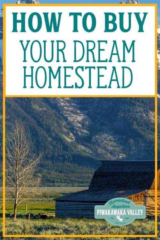 Buying a homestead is the dream of many. It does come with its own risks and benefits. If you buy the wrong block of land, you will be stuck with the consequences for a long time to come.  It is important to think very carefully before buying a block of land. Buying rural land is very different to buying in the city, and the bigger the plot, the more there is to consider. #piwakawakavalley #homesteading #homestead #rurallife