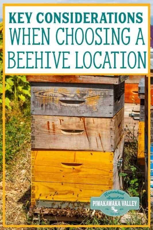 If you are planning on keeping bees, you need to choose the location of your beehive carefully. A beehive can fit in to almost any location with some considerations. Be it the corner of a large garden, an orchard, an urban terrace or on your rooftop. Choosing the right location for your hive can be the difference in the health and happiness of both your neighbours and your bees! #piwakawakavalley