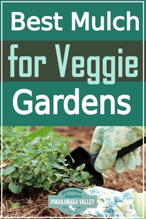 best mulch for vegetable gardens