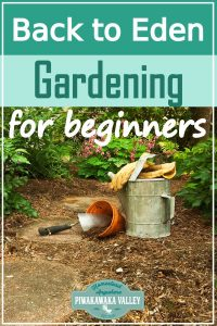 Back to Eden Gardening is a method of no till and minimal input gardening that is a great and productive way of growing lots of vegetables from your backyard. This beginners guide will show you how BTE gardening can work at your place. #backtoedengarden #vegetablegardening #piwakawakavalley