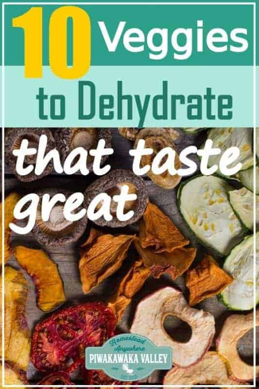 Let's face it some dehydrated vegetables and fruit are simply gross. Here are 10 vegetables that you can dehydrate and how to use them that actually taste nice. Perfect for storing the harvest or for keeping your produce that you grew in your garden at home! #foodpreservation #piwakawakavalley