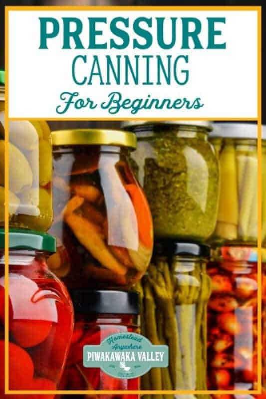 Pressure canning vegetables for beginners the complete guide #piwakawakavalley