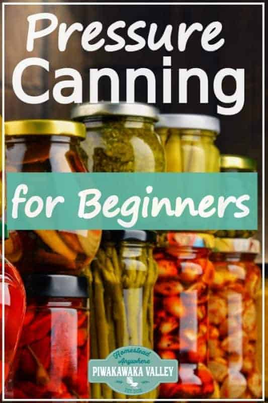 Don't do it wrong! Pressure canning vegetables for beginners the complete guide #piwakawakavalley