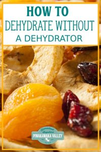Dehydrating vegetables and fruit is a great way of preserving them without taking up much space. Here are some ideas for dehydrating without a dehydrator by using an oven or several other dehydration methods! #piwakawakavalley