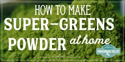 Super greens powders are great to add to smoothies, omelets, soups, stews and pretty much anything you can think of. I have even heard of mums sneaking greens powders in to cakes and muffins.