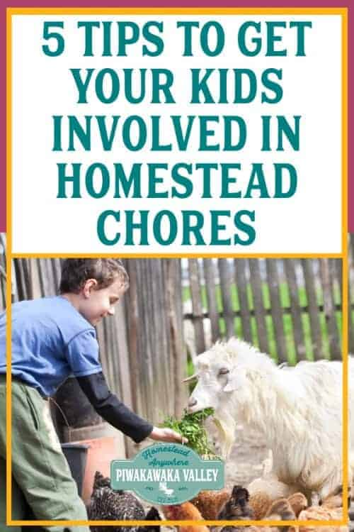 5 Tips to get your Kids Involved in Homestead Chores