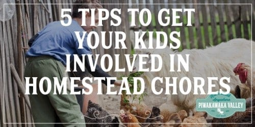 Teach your children traditional skills that will help them get ahead in life by getting them to help with the chores on your homestead #piwakawakavalley