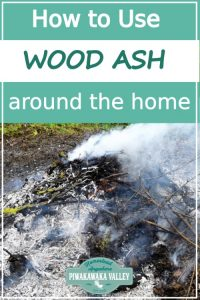 5 Ways to Use Wood Ash in your Home and Garden promo image