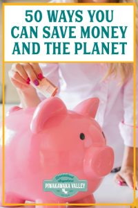 50 ways you can Save Money and the Planet