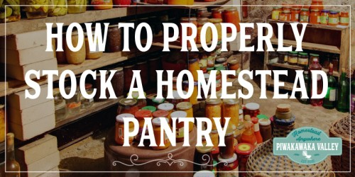 For year-round food security it is vitally important that you properly stock your homestead pantry. This will allow your entire family to always have plenty of food to eat, no matter what the weather, finances or social climate brings us.There are certain strategies that you must use to have a fully stocked homestead pantry that will not only save money, but will also provide food security throughout the year.