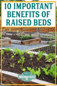 Important Benefits Of Raised Garden Beds