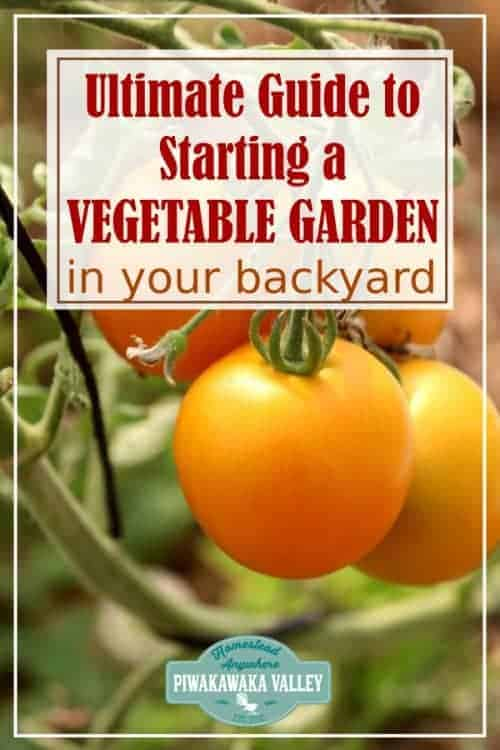 The Ultimate Guide to Starting a Vegetable Garden From Scratch. Do you want to grow vegetables in your backyard? Here is everything you need to know on choosing and planting a new garden. #piwakawakavalley