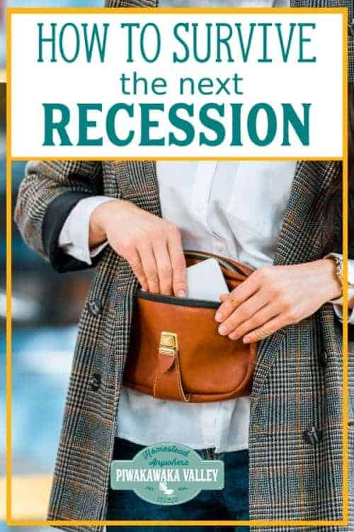 top 5 tips to get you recession ready plus 15 things you can do to help get you, your family and your homestead through the next recession / depression