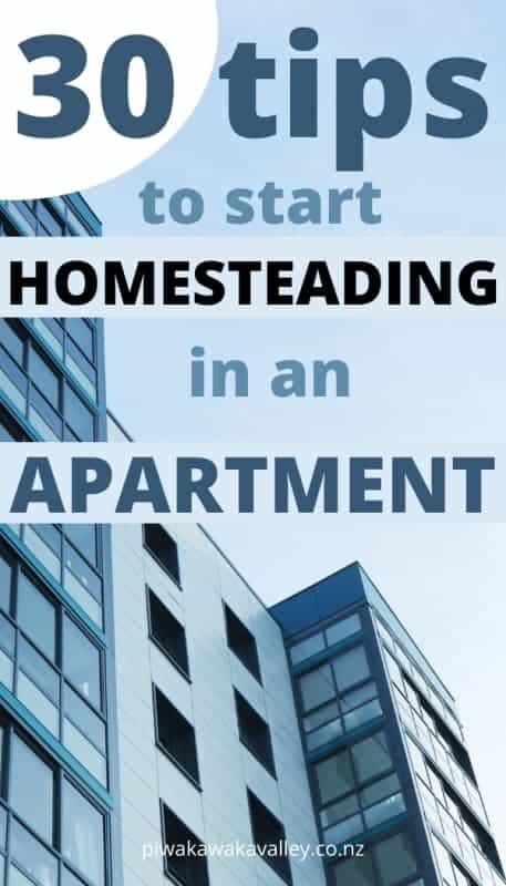 Apartment homesteading promo image