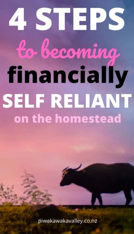 4 Simple Steps to Being a More Financially Self-Reliant Homesteader