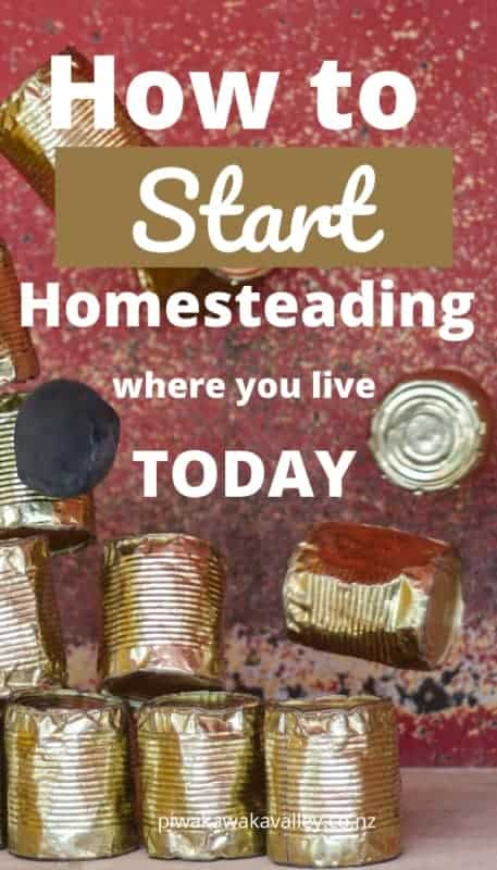 How to homestead where you are today