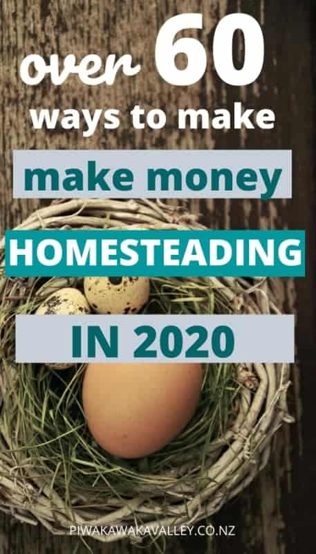 make money homesteading in 2020