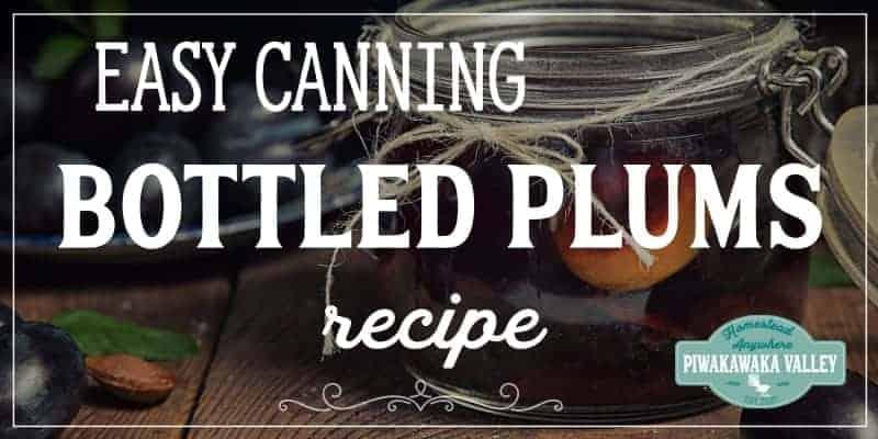 bottle plums recipe