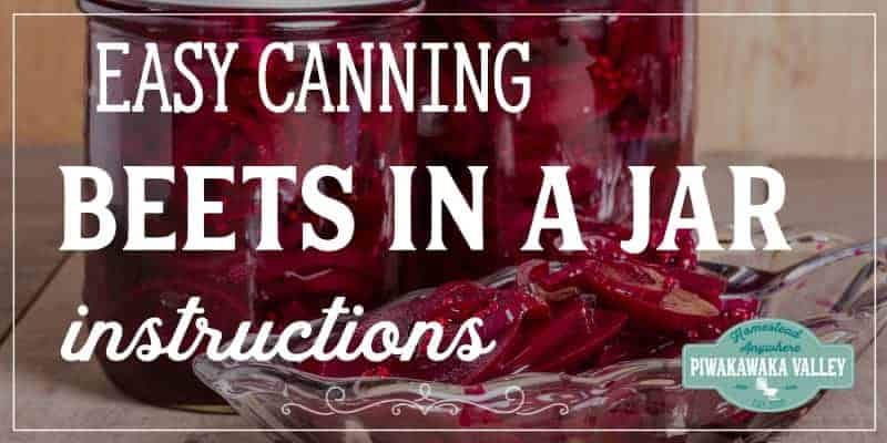 Canned Beets: How to make pickled beetroot at home promo image