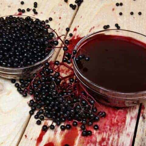 Elderberry syrup using fresh elderberries