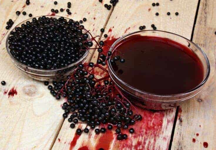 How to make elderberry syrup using fresh elderberries step by step with video promo image
