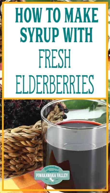 how to make elderberry syrup with fresh berries promo image