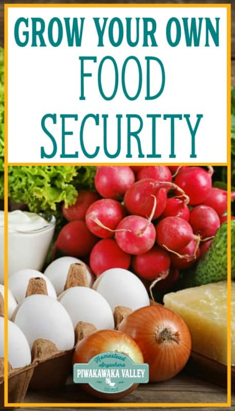 How to create food security pinterest image with overlay