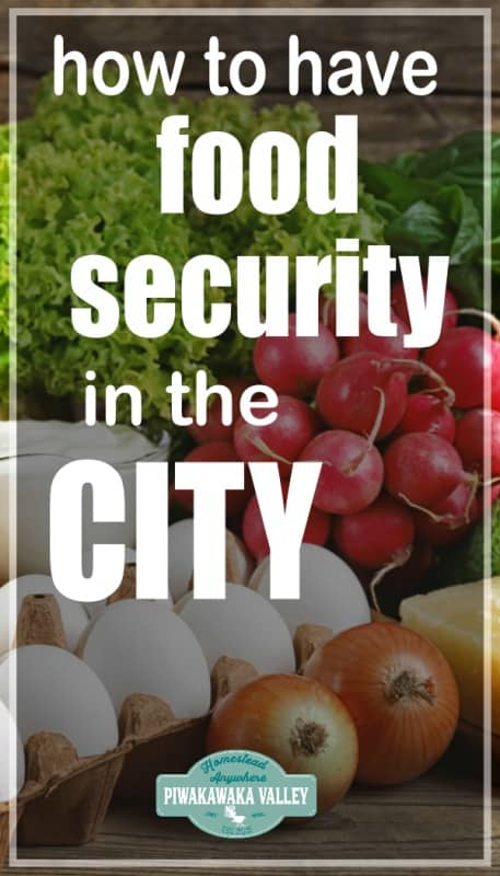 Creating your own food security: Become more self reliant even in the city promo image
