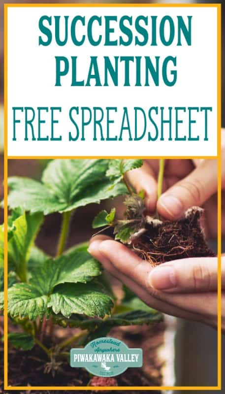 Succession Planting Spreadsheet and Tips (with video) promo image