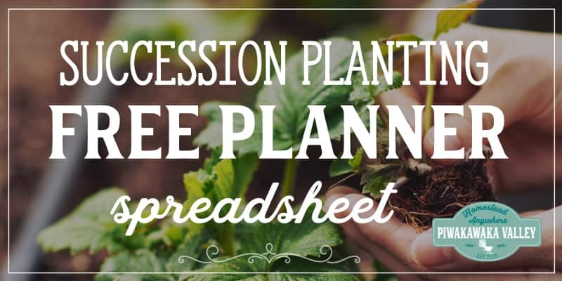 free succession planting spreadsheet garden planner